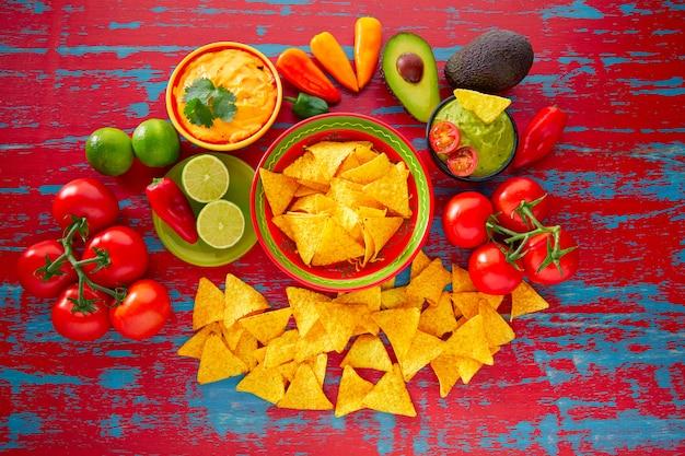 メキシコ料理のナチョスとワカモレチリソース
