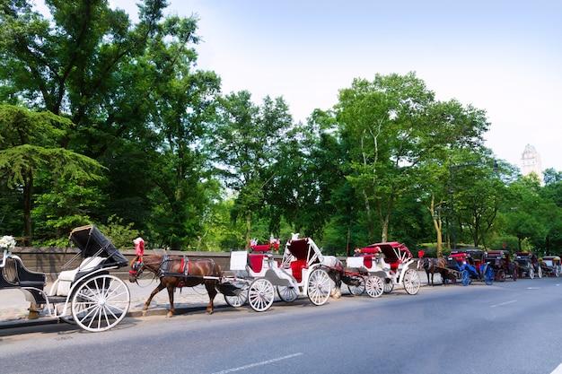 ニューヨークのセントラルパークの馬車