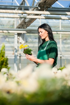 Женщина садовник в огороде