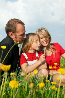 牧草地の家族