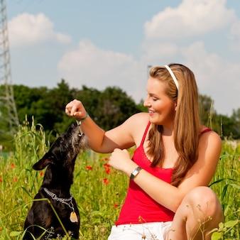 牧草地で彼女の犬と遊ぶ女性
