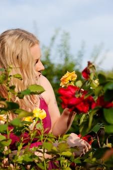 庭のバラを切る女性