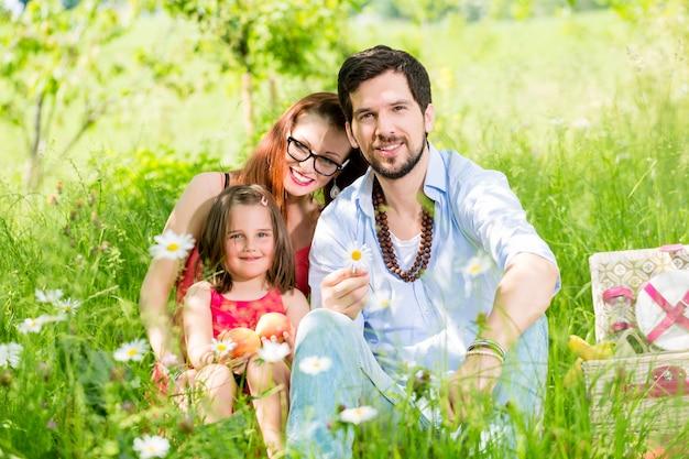 健康的な果物の牧草地でピクニックをしている家族