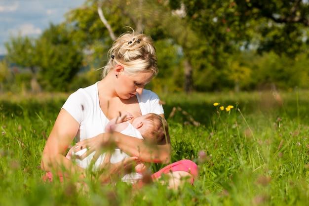 牧草地で母親看護赤ちゃん