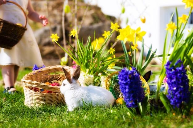 バスケットと卵の牧草地でイースターのウサギ