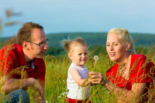 タンポポの種を吹く草原の子供