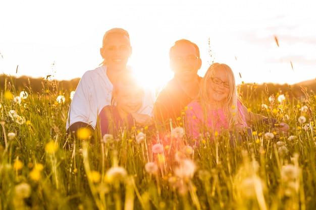 夏の草原に座って幸せな家族
