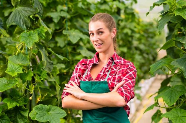 Женский коммерческий садовник в зеленом доме
