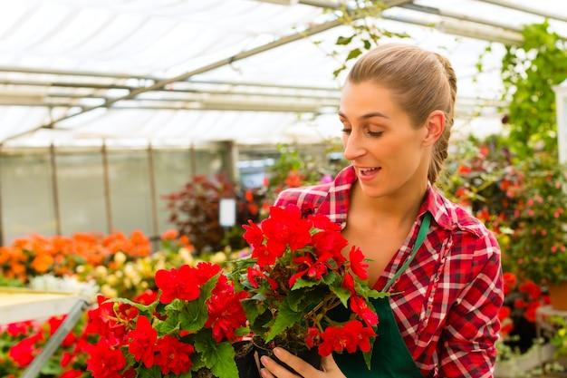 彼女の緑の家の花屋の庭師