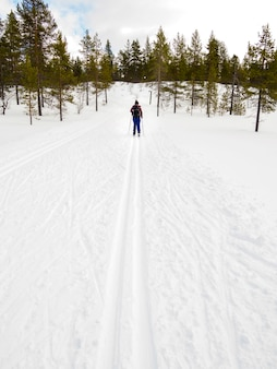 冬の雪に覆われた風景の中の女性クロスカントリースキー
