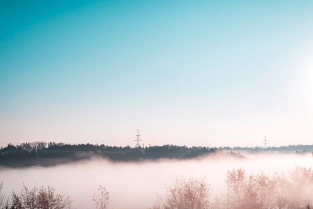 霧深い天候の朝の森の景色の素晴らしい景色。