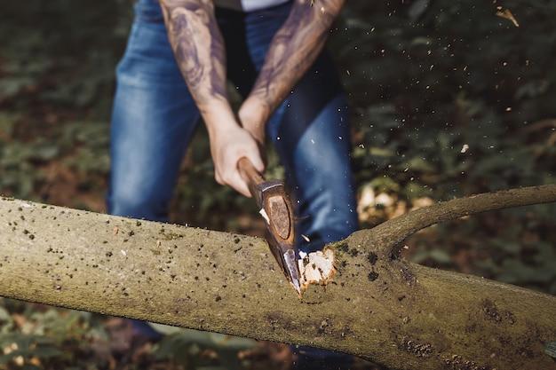 木こりが斧で木をハッキング。