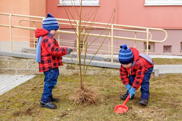 双子の兄弟が木を投げた