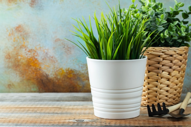 白い植木鉢に人工の緑の植物。
