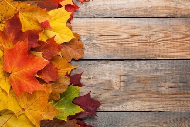 木の床に色鮮やかな紅葉。