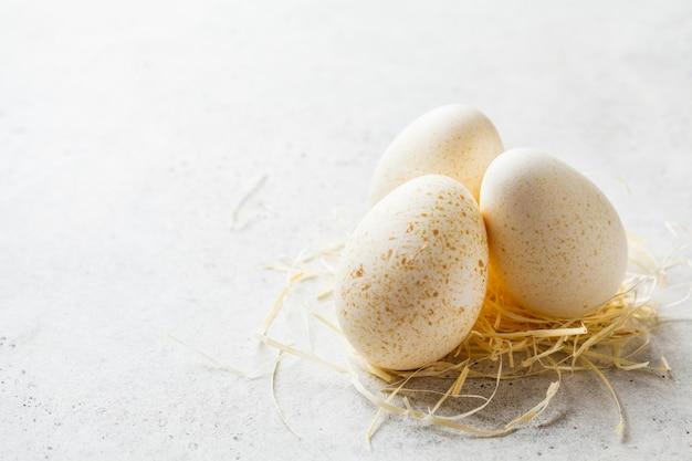 コピースペース、白地に干し草のトルコの卵。