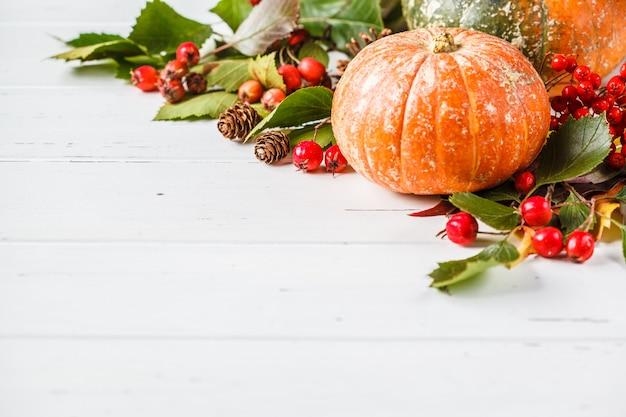 Осенняя композиция. листья осени, ягоды и тыква на белой предпосылке, космосе экземпляра.