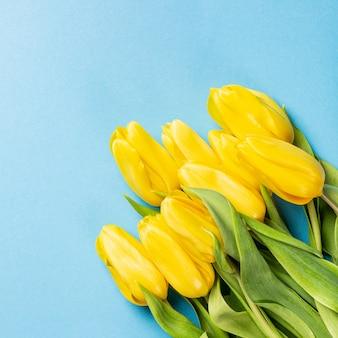 黄色のチューリップの背景
