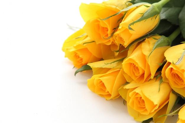 白い背景の上の黄色いバラの花束