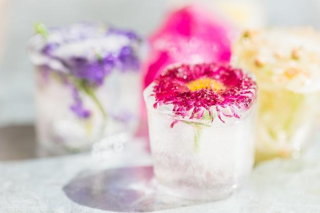 Замороженные цветы в кубиках льда