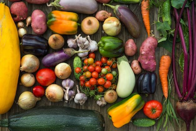 Свежие органические овощи. концепция осеннего урожая.