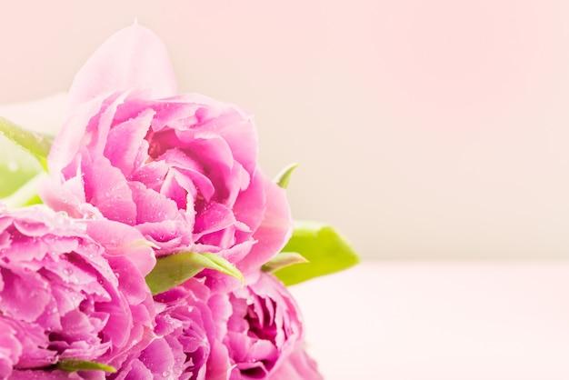 紫色の牡丹スタイルのチューリップの美しい束