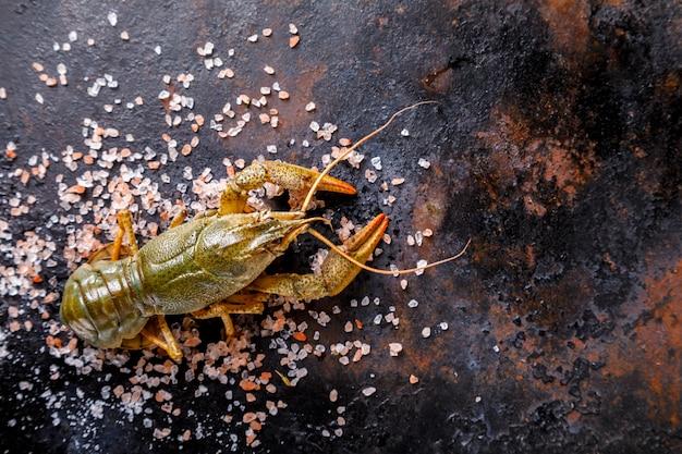 ザリガニ生、赤ちゃんロブスター。夏の食べ物。シーフード。
