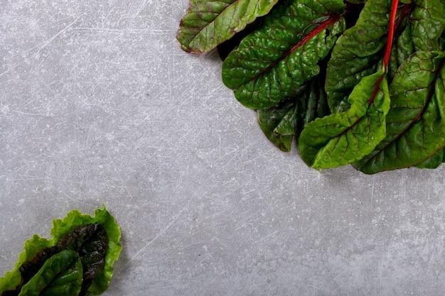 チャードスイスの新鮮な緑と赤の色