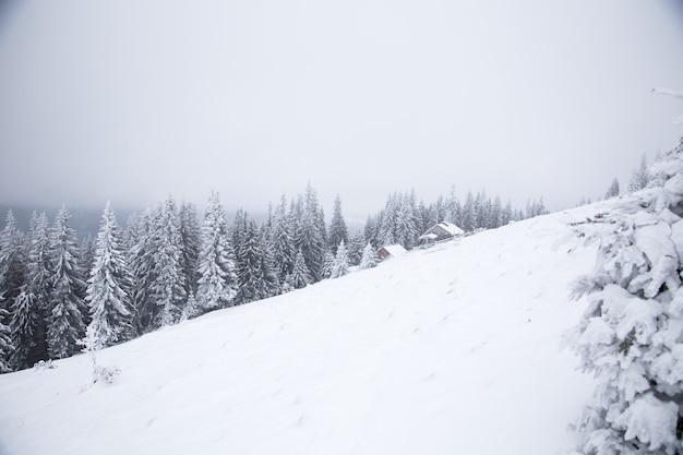Красивый зимний горный пейзаж. хижина в горах зимой. зимний пейзаж со свежим снегом в горном лесу.