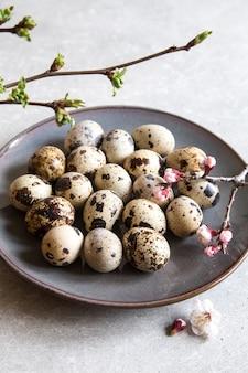 Натуральные органические свежие перепелиные яйца. белковая диета.