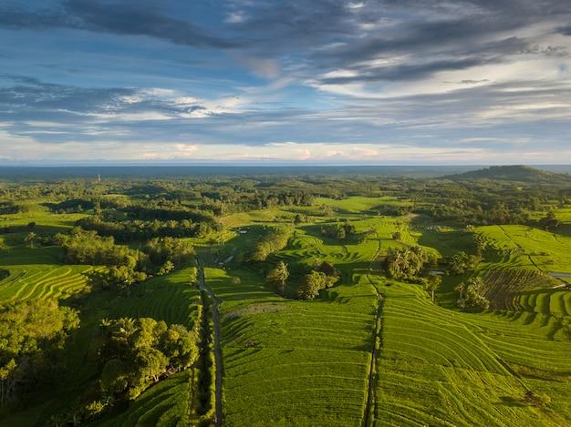 曇り時の空中写真からインドネシアの自然の美しさ