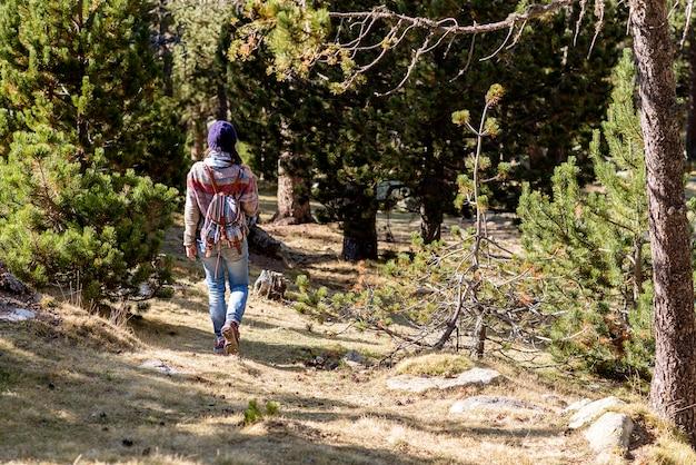 Вид сзади рюкзаком женщина, идущая по тропе в лес