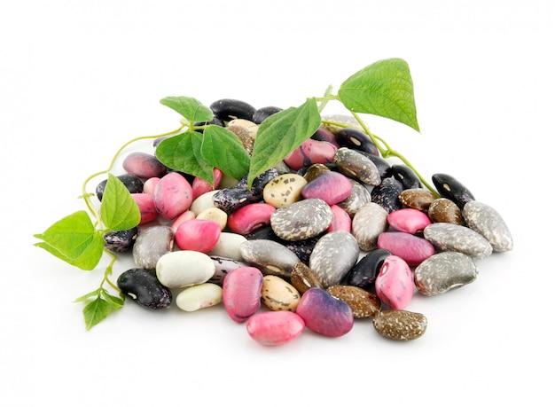 種子と葉の白い背景で隔離の熟したインゲン豆のヒープ