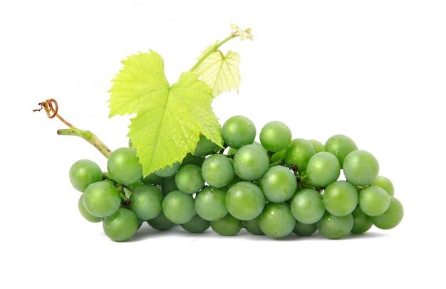 分離された緑の葉と新鮮なグレープフルーツ