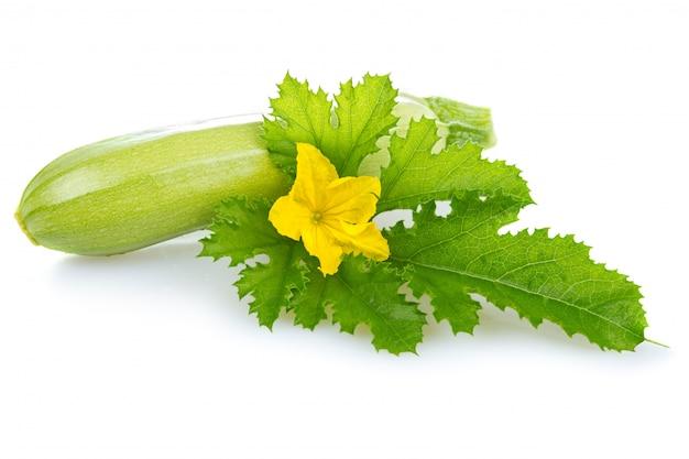 熟した骨髄野菜の葉の分離