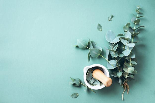 ユーカリの葉と白い乳鉢、乳棒。代替医療の成分