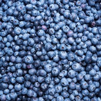 ブルーベリーの果実のテクスチャ背景