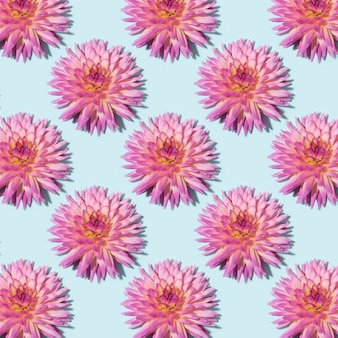 青色の背景にダリアの花のパターン