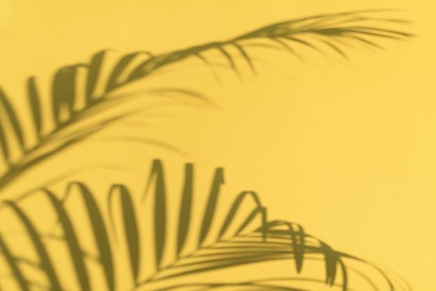 熱帯パームの影はパステル調の黄色の壁の背景に残します。コピースペースと夏のバナー