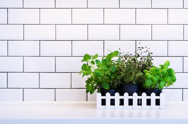 Мята, тимьян, базилик, петрушка - ароматические кухонные травы в деревянном ящике на кухонном столе, кирпичная плитка.