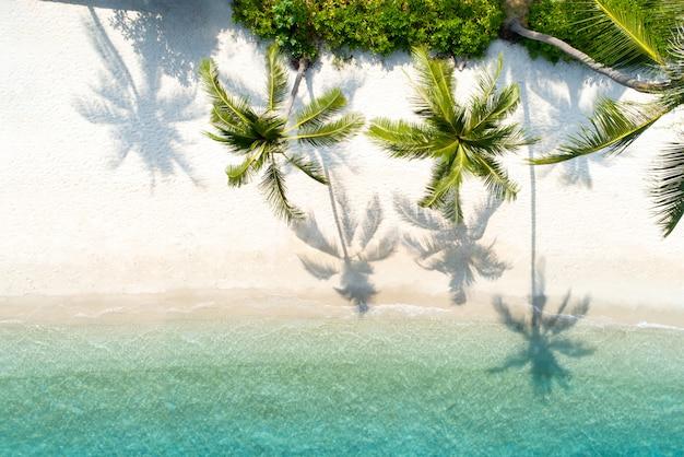 美しいビーチのトップビュー空中ドローンショット