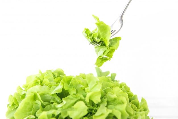 Свежий органический здоровый зеленый салат из овощей дуба для салата