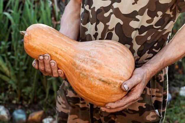 男性の手、菜食主義の秋の背景にカボチャ。
