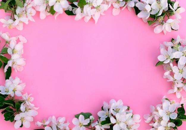Весной цветущие ветви на розовом фоне.