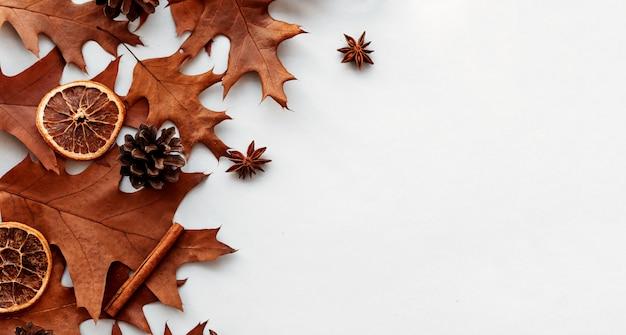 松ぼっくりと紅葉の背景