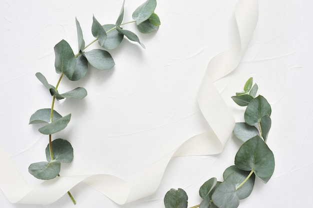 ユーカリの葉と白のリボンフレーム。葉の枝で作られた花輪