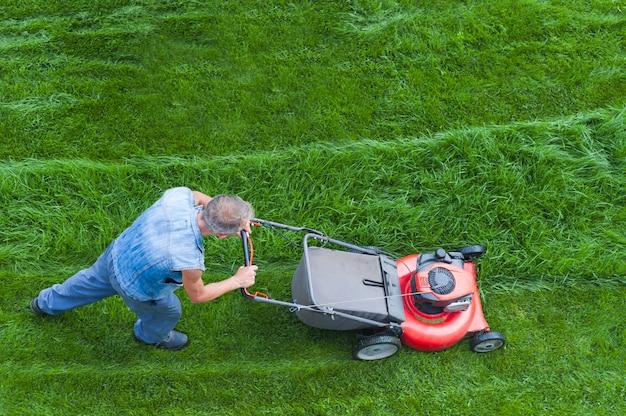 芝刈り機は緑の芝生を刈っています、芝刈り機を持つ庭師は裏庭、上面図で働いています。