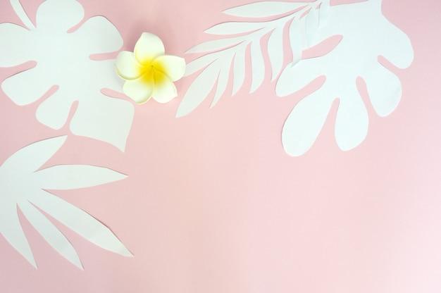 熱帯の葉とピンクの紙の背景に白い花