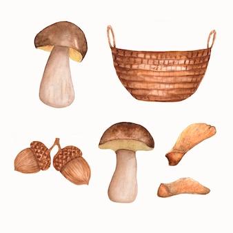 秋の要素の水彩手描きセット