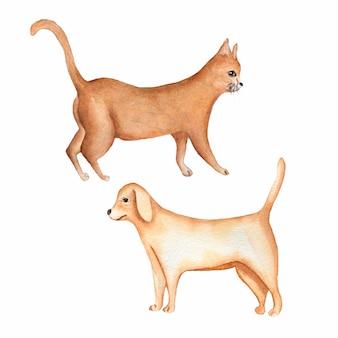 Акварельная живопись собаки и рыжего кота